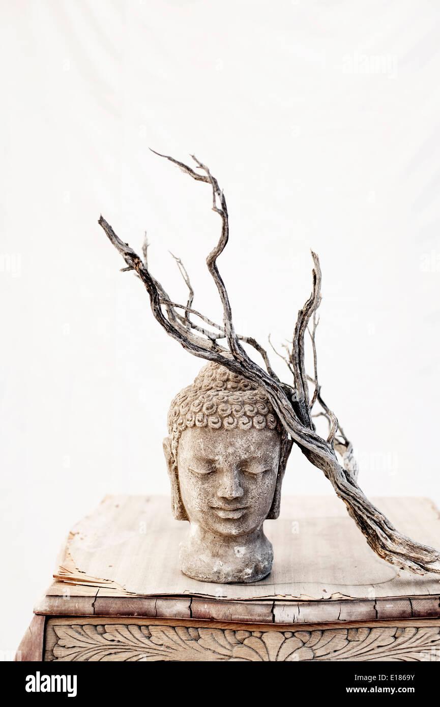 Still Life fotografia. Buddha e invecchiato Ramo di Bush. Immagini Stock