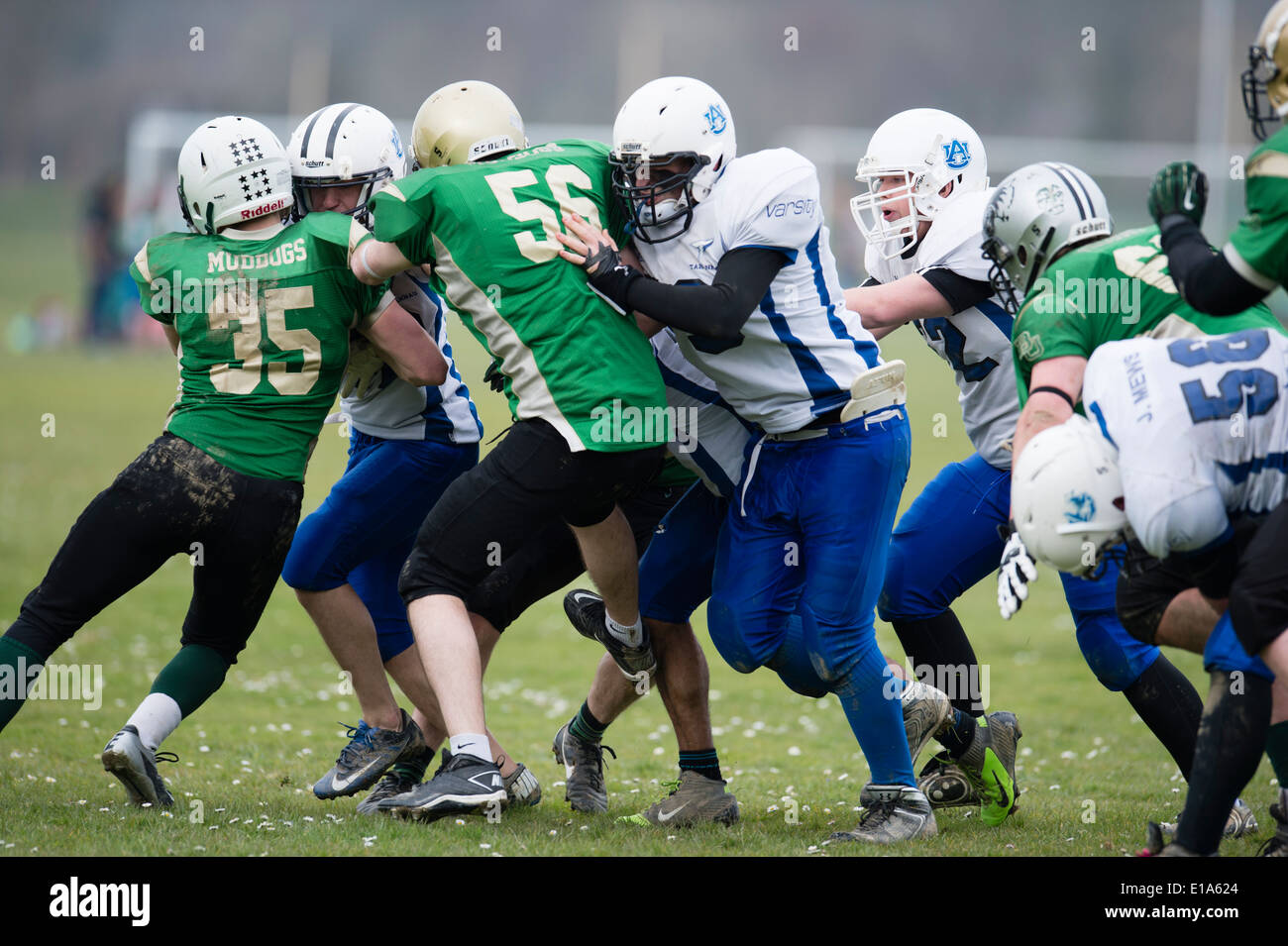 Tarannau, Aberystwyth University american football team (in bianco) giocando una partita del campionato Wales UK Immagini Stock