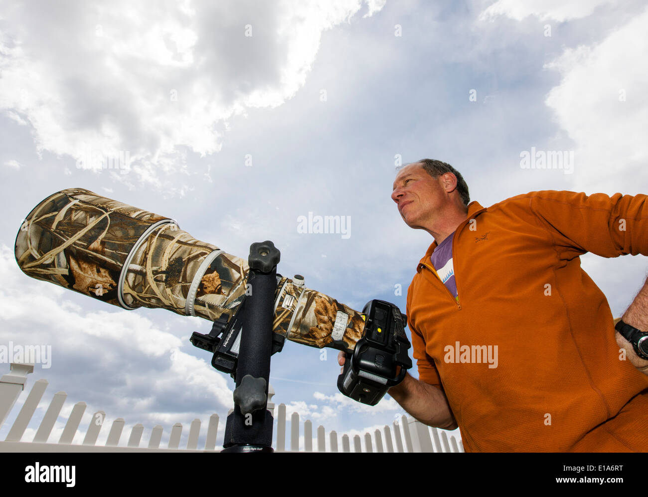 Wildlife Photographer H. Mark Weidman lavora con un grande teleobiettivo Immagini Stock