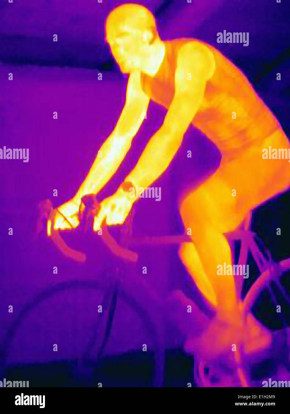 Immagine termica del giovane maschio ciclista in formazione, che mostra il calore dei muscoli e dei pneumatici di biciclette Immagini Stock