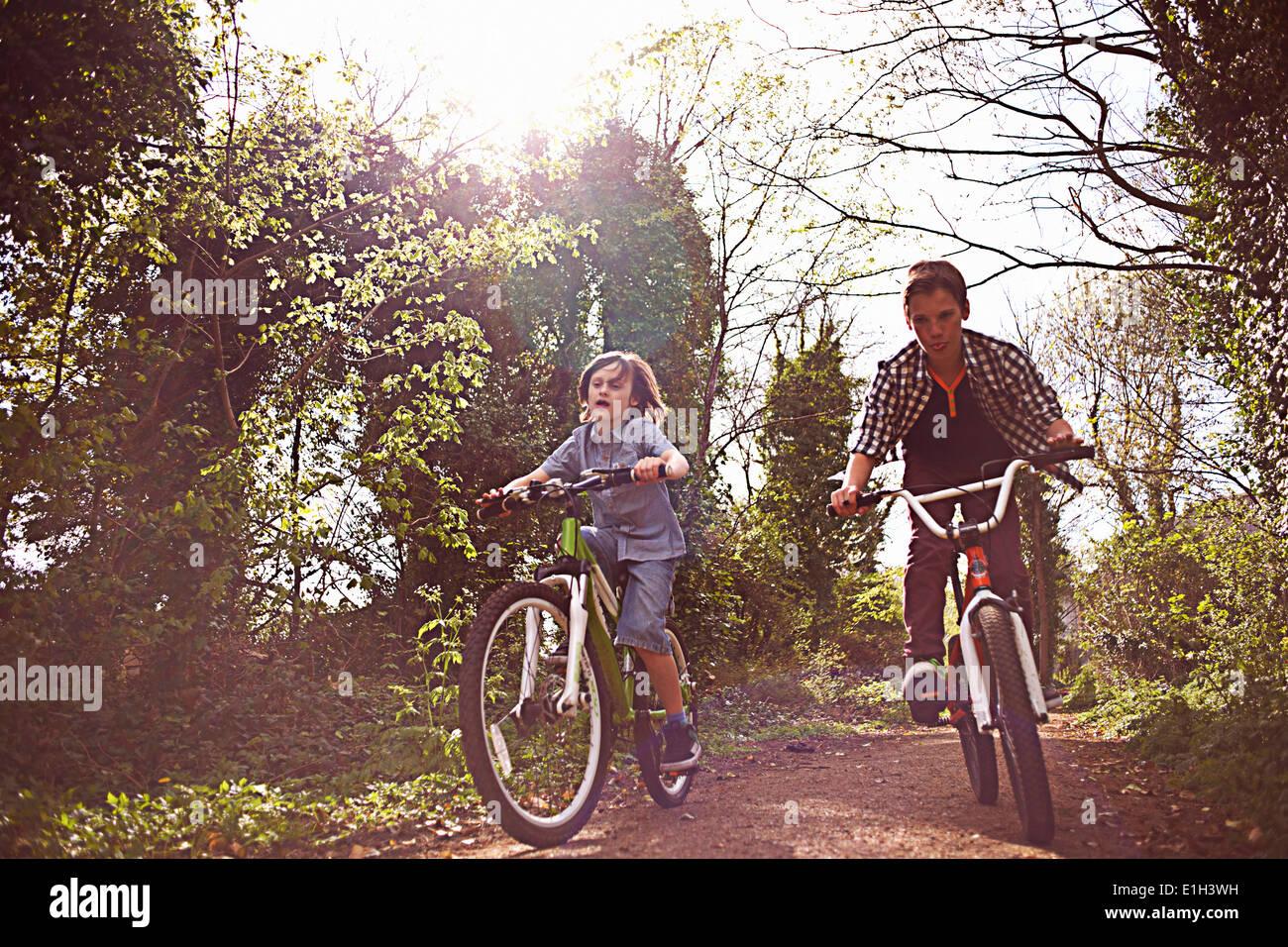 Ragazzi in bicicletta attraverso la foresta Immagini Stock