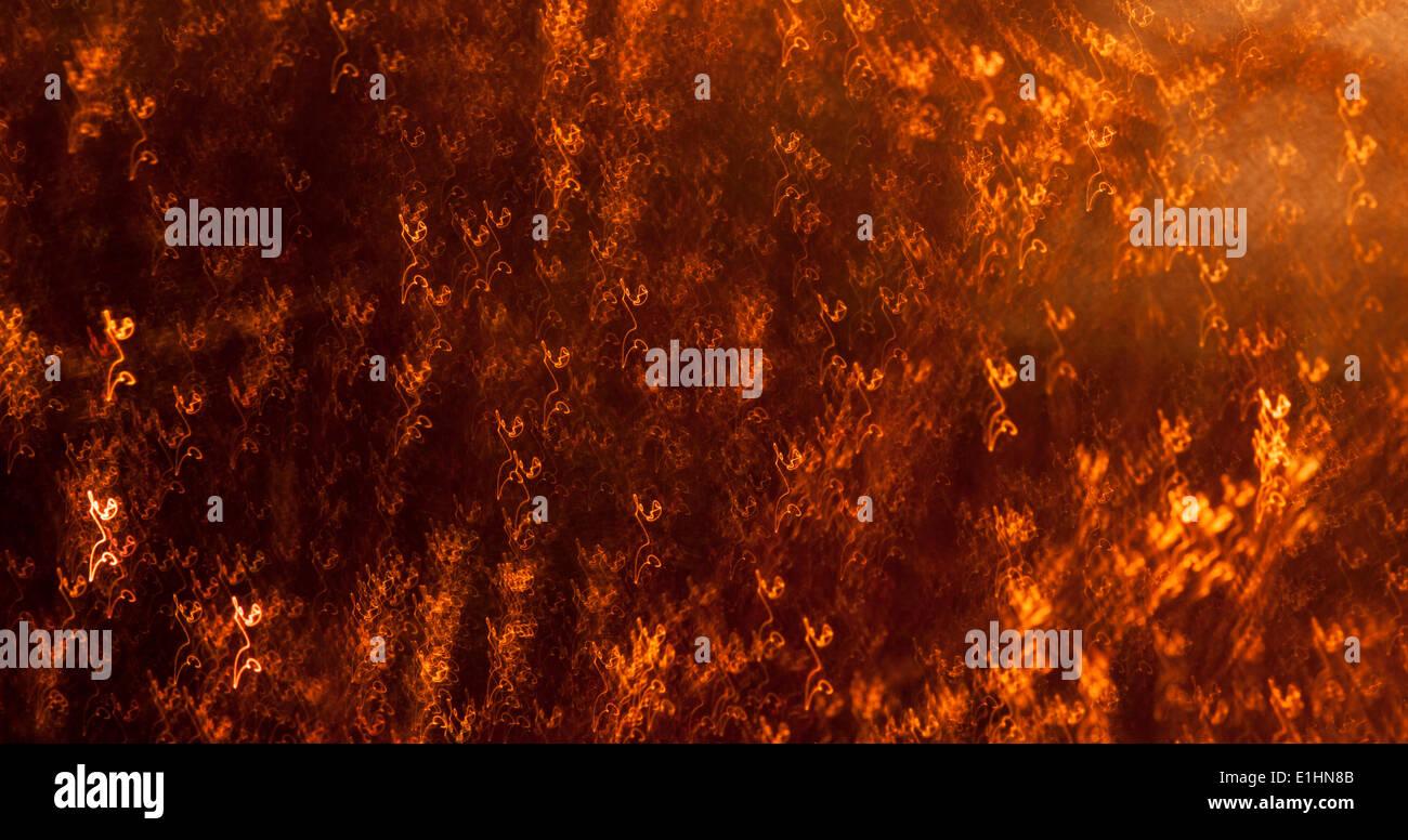 Golden astratta - sfondo dorato texture tracery Foto Stock