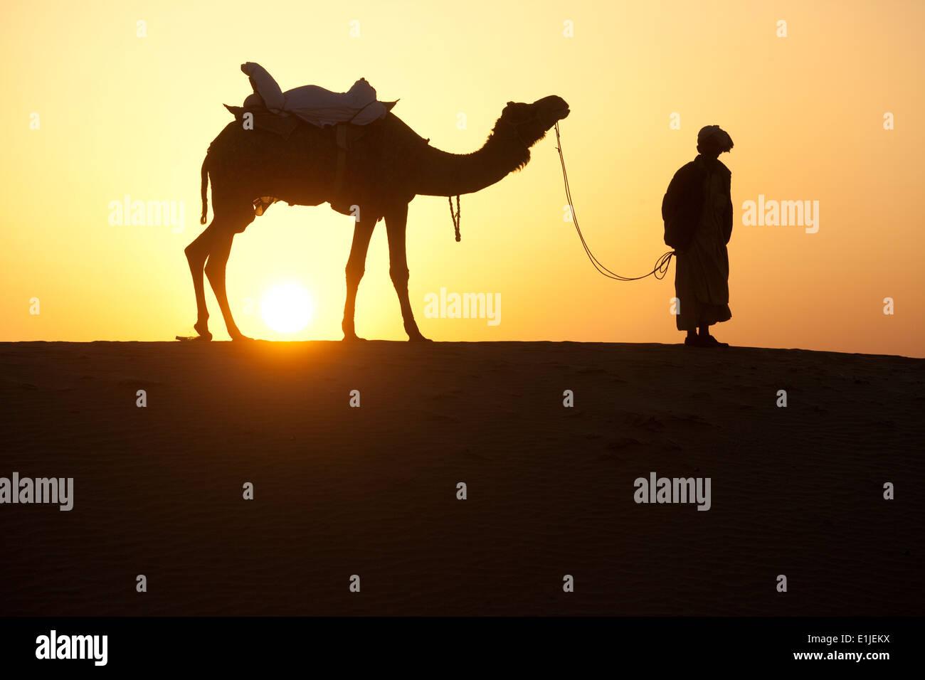 Uomo che cammina con i cammelli al tramonto nel deserto di Thar, Jaiselmer, India Immagini Stock