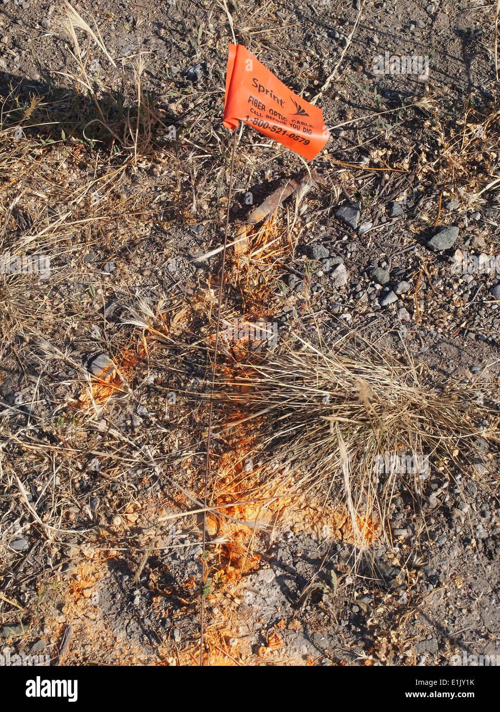 Avviso di Sprint sepolto cavo in fibra ottica di marcatore flag Fremont California Immagini Stock