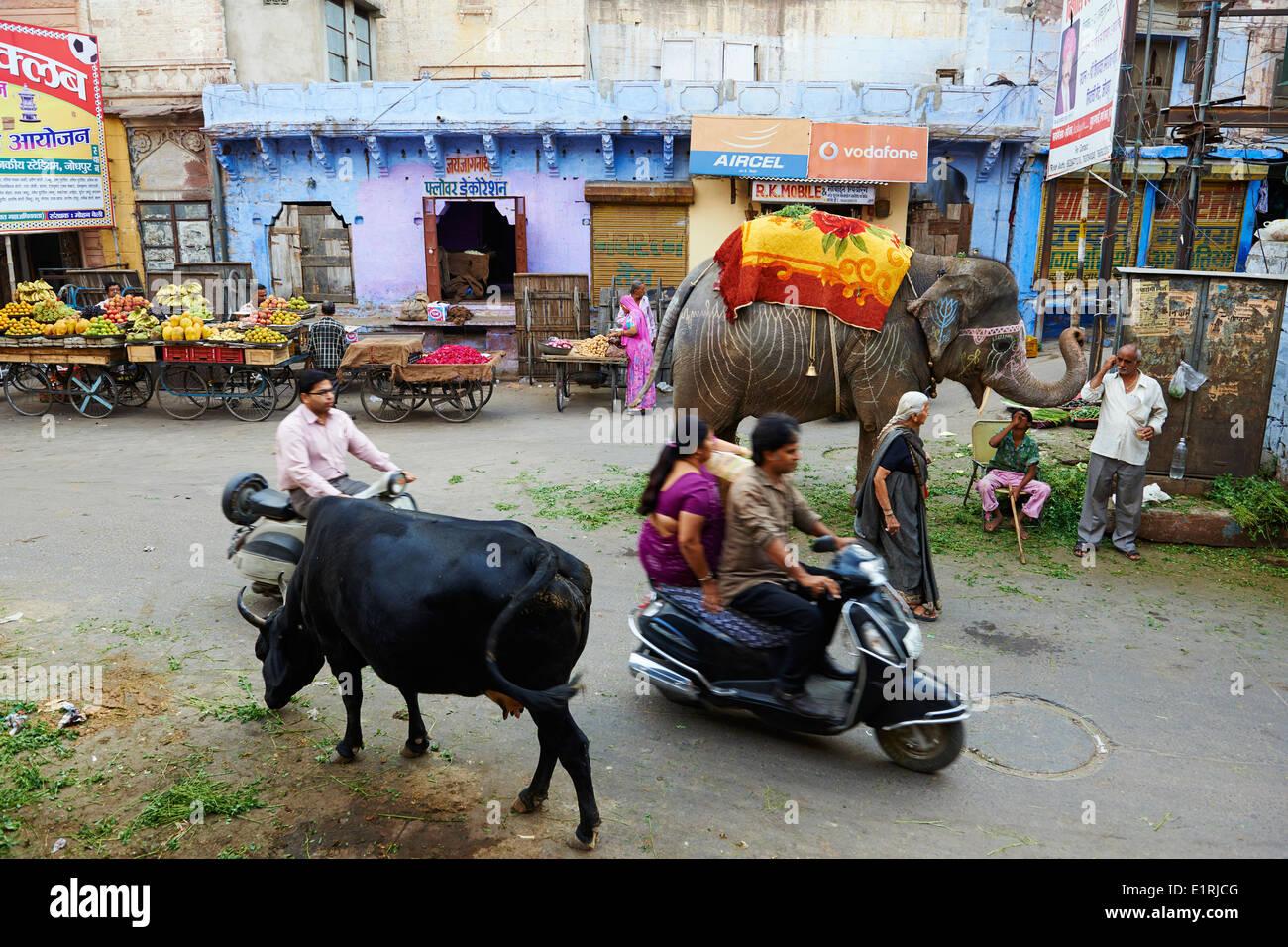 India Rajasthan, Jodhpur la città blu Immagini Stock