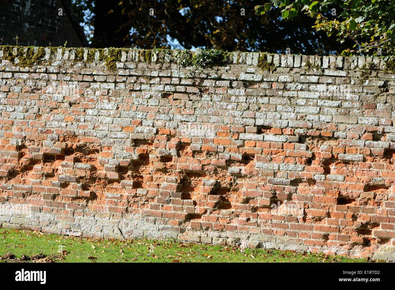 Un antico muro di mattoni con molti mattoni erosi. Norfolk, Regno Unito. Immagini Stock