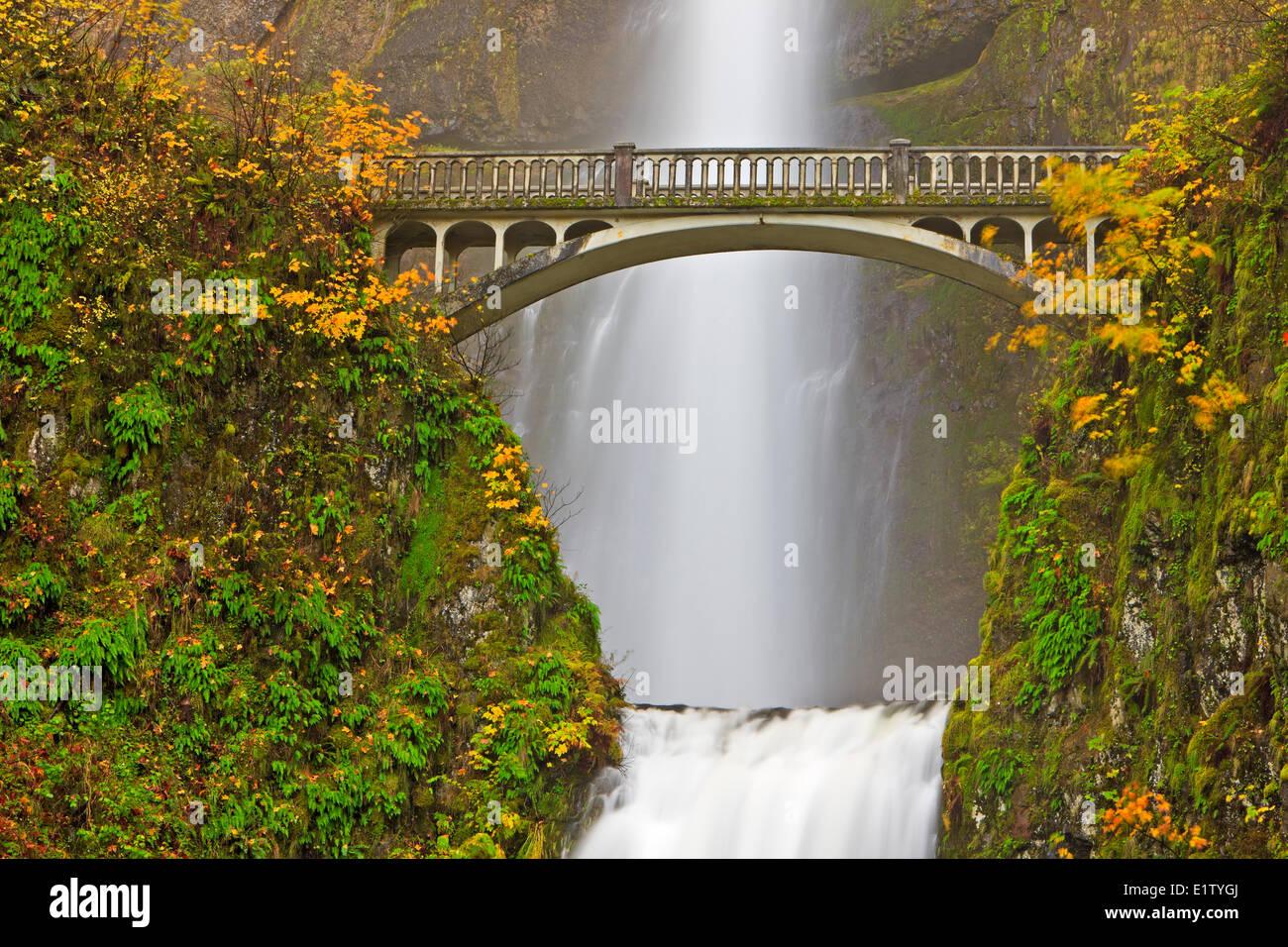 Attrazione turistica Multnomah cade a 611 piedi di altezza ruggito impressionante cascata nel tardo autunno con Immagini Stock