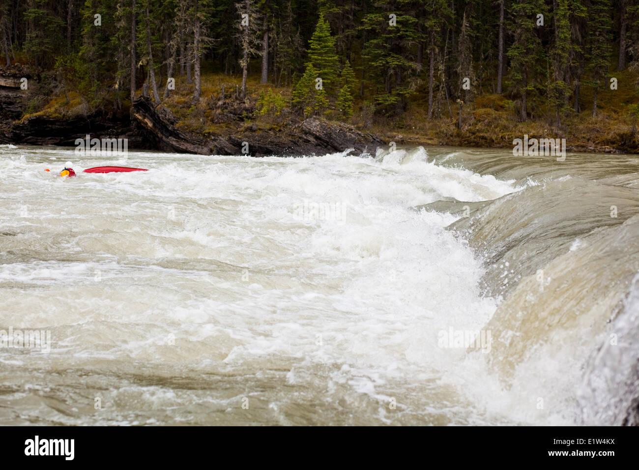Una femmina di kayaker nuoto su un pericoloso veloce sul Red Deer River, AB Immagini Stock