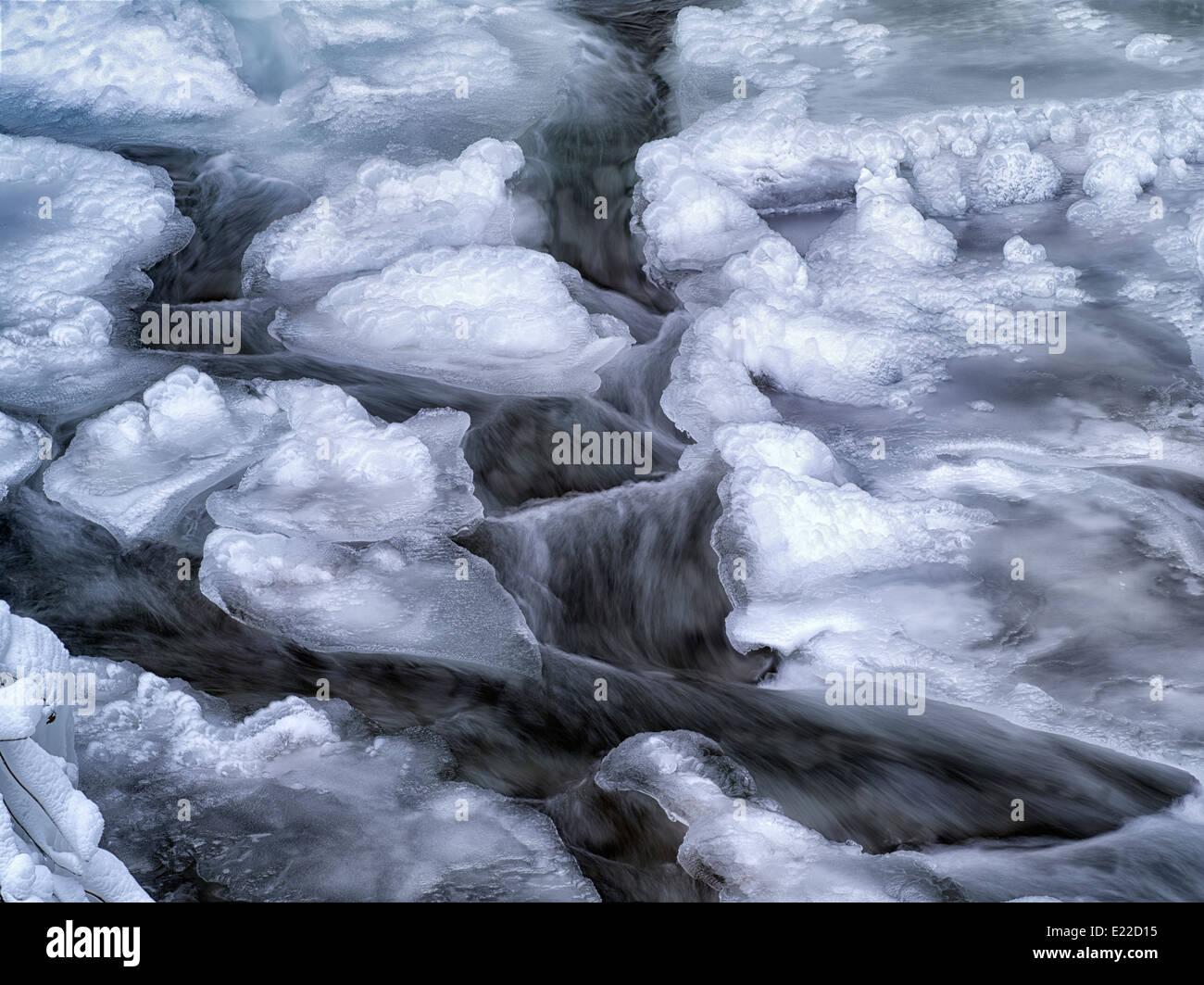 Piccolo alimentatore stagionale con flusso di ghiaccio. Columbia River Gorge National Scenic Area, Oregon Immagini Stock