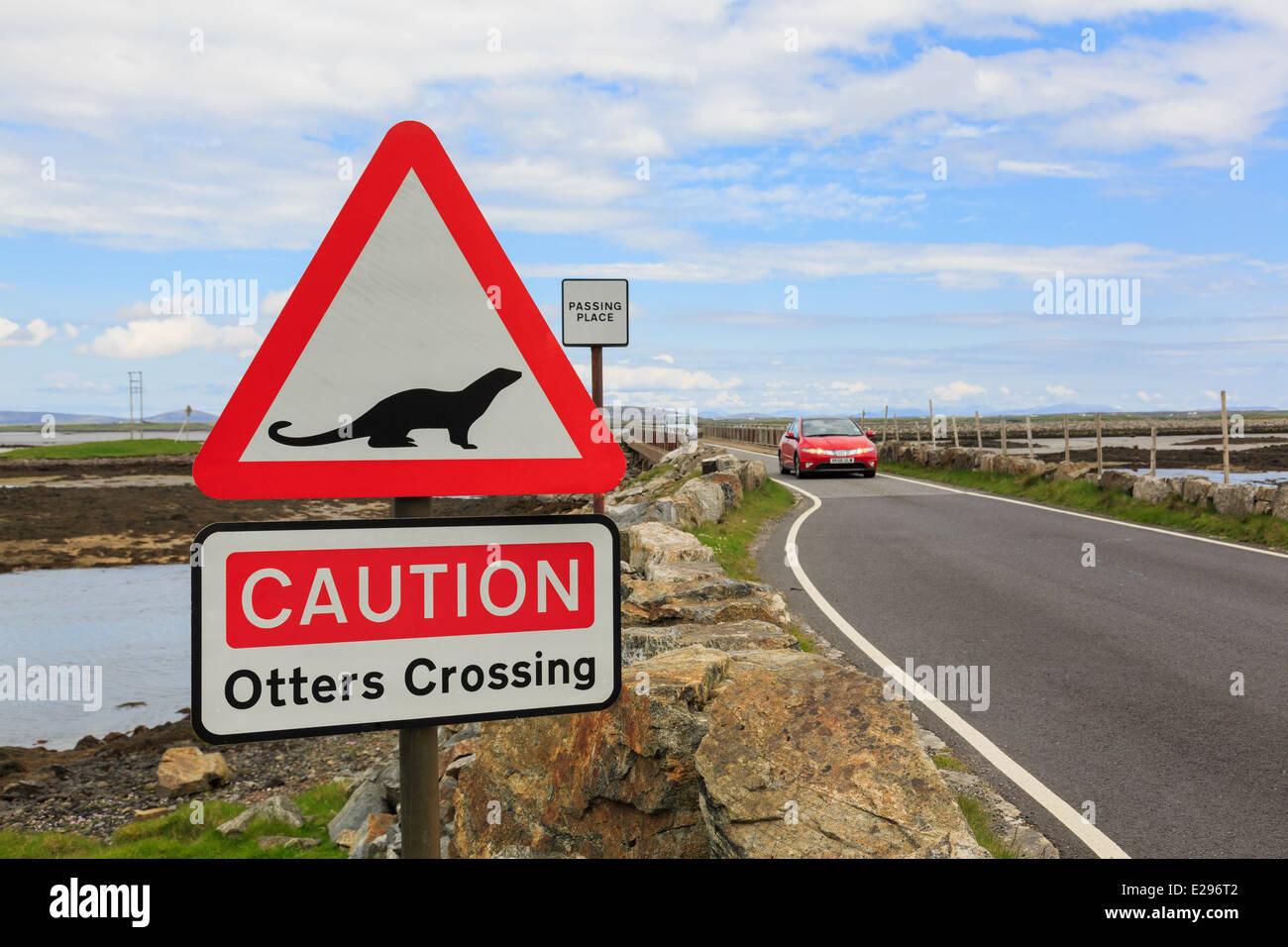 Attenzione lontre attraversando un triangolo rosso cartello stradale da causeway da Benbecula di North Uist Ebridi Immagini Stock