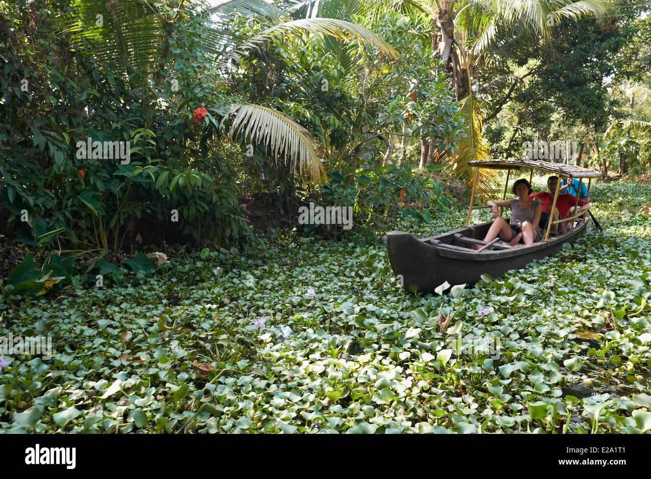 India Kerala State, Alleppey, la laguna di acqua stagnante, gite in barca per turisti Immagini Stock