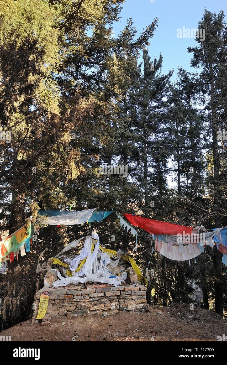 Cina, Provincia di Qinghai, Amdo, Tongren (Rebkong) contea, Tashi Kyil monastero, Trono di yogi Shabkar Tsokdruk Immagini Stock