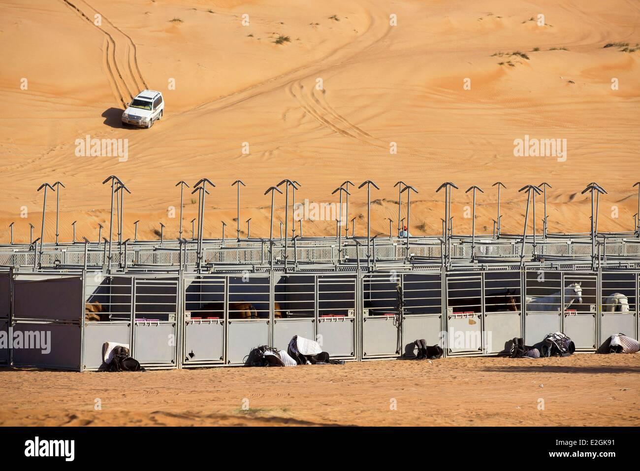 Il sultanato di Oman Ash Sharqiyyah regione Wahiba desert avventura equestre galoppa di Oman Tawi Wareed camp box Immagini Stock