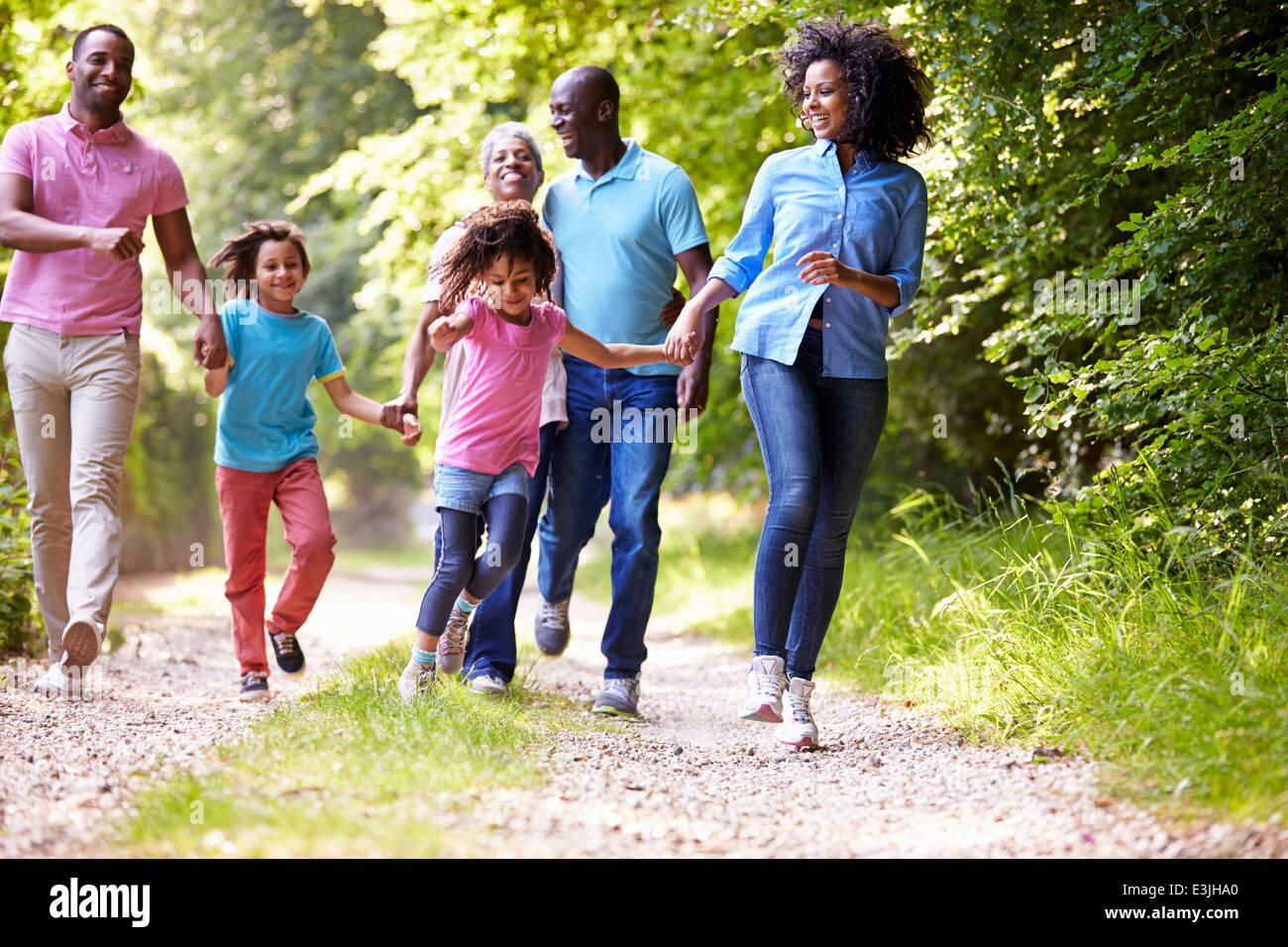 Multi generazione famiglia americana africana sul paese a piedi Immagini Stock