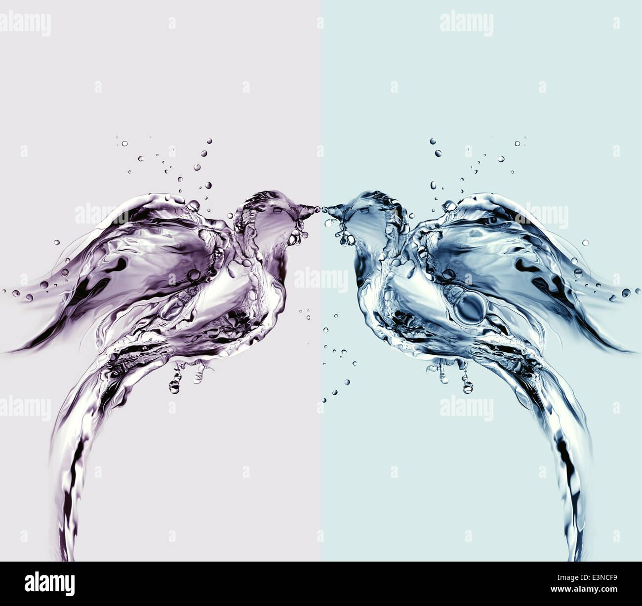 Due uccelli fatta di acqua baciare. Immagini Stock