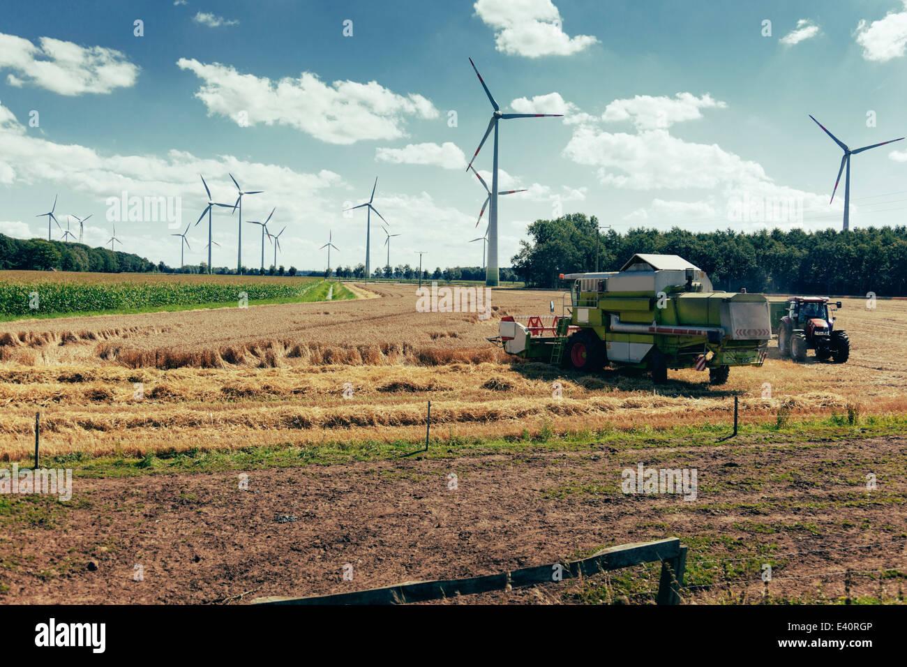 In Germania, in Renania settentrionale-Vestfalia, Sassenberg, Harvester in campo, ruote di vento in background Immagini Stock