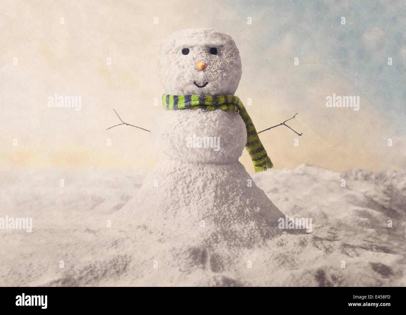 Modello di un pupazzo di neve Immagini Stock