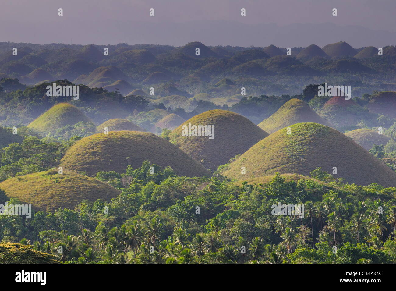 Chocolate Hills, Bohol, Filippine, Sud-est asiatico, in Asia Immagini Stock