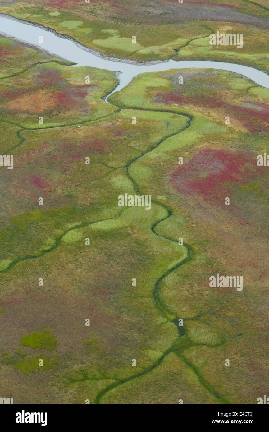 Vista aerea della piana di fango lungo Cook Inlet, Alaska. Immagini Stock