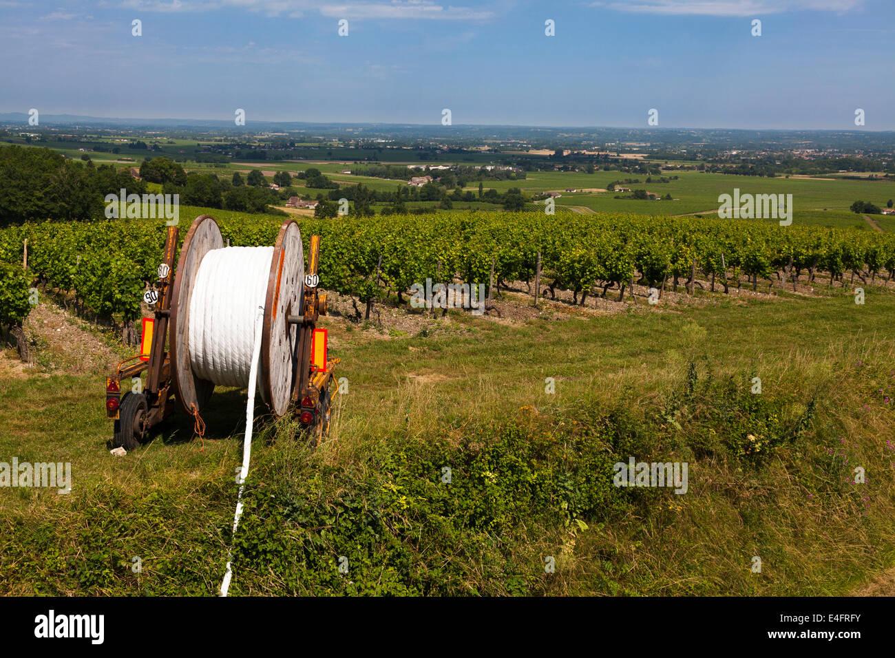 Acqua tubi di irrigazione sul tamburo da filari di vigne. Immagini Stock