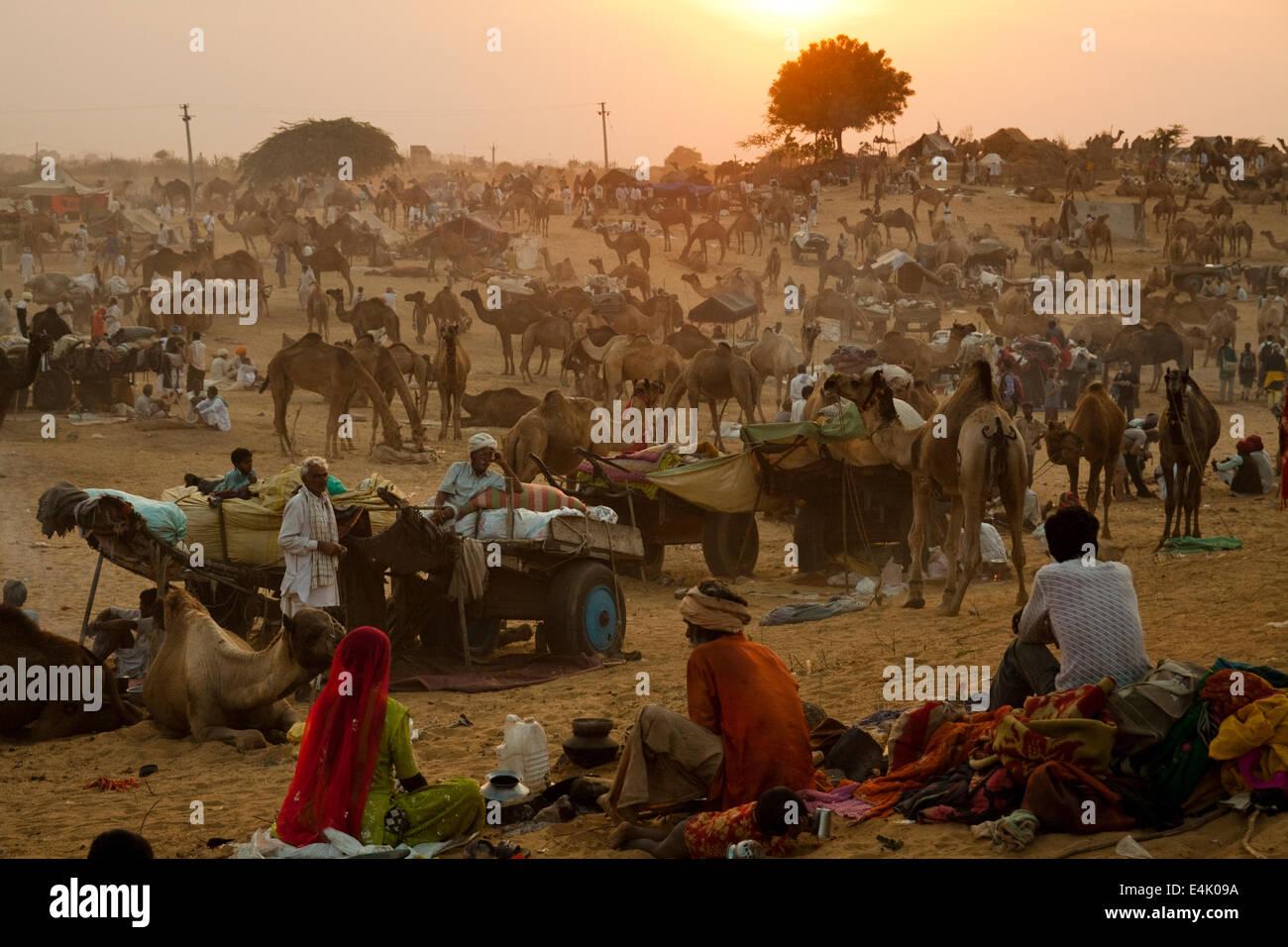 Nel terreno in Pushkar Camel Fair Foto Stock