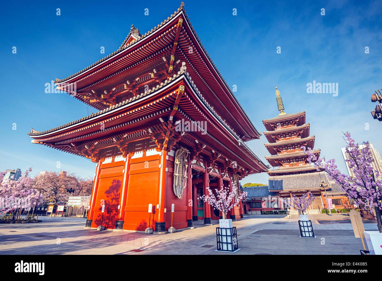 Il Tempio di Senso-ji di Asakusa, Tokyo, Giappone. Immagini Stock