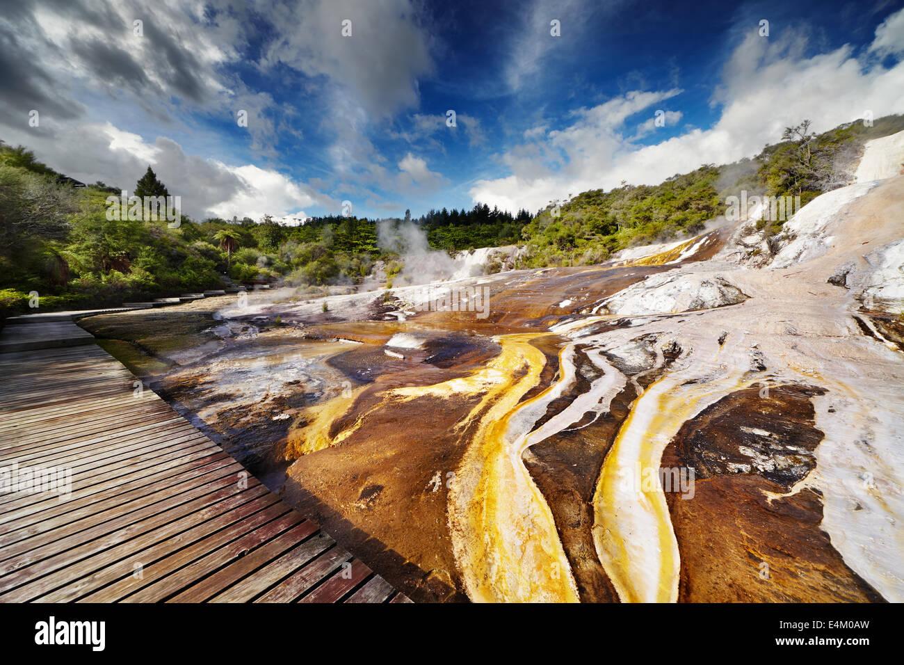 Orakei Korako geotermal area, Nuova Zelanda Immagini Stock