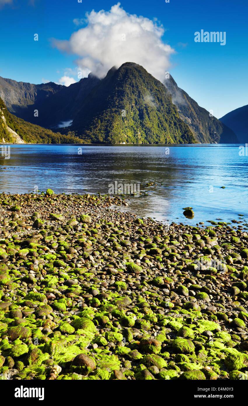 Milford Sound, Isola del Sud, Nuova Zelanda Immagini Stock