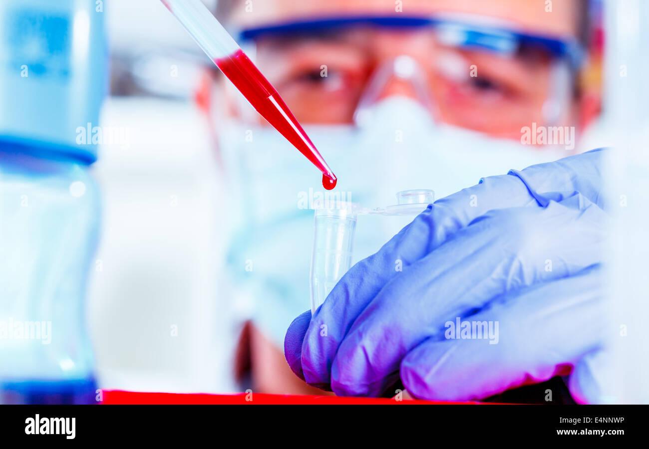 Scienziato ricerca nel laboratorio di genetica, Genetics campo della biologia lo studio di geni, eredità e Immagini Stock