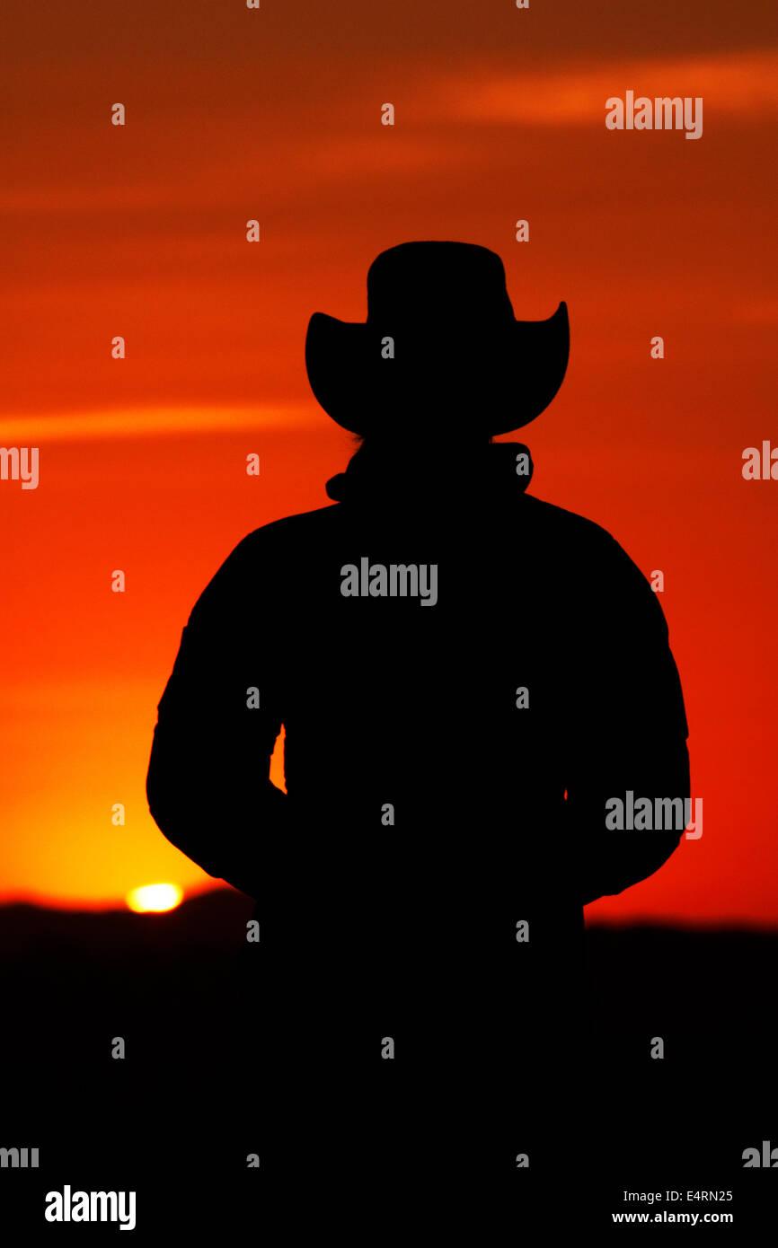Guardare turistico Alba Monument Valley Navajo Nation, Utah e Arizona Border, STATI UNITI D'AMERICA Immagini Stock