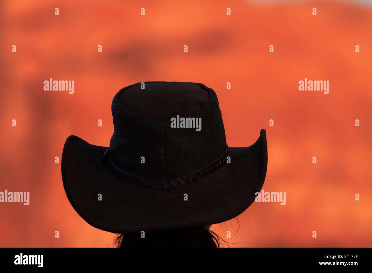 Turista nel cappello da cowboy e luce in ritardo sulle formazioni rocciose, Monument Valley Navajo Nation, Utah Immagini Stock