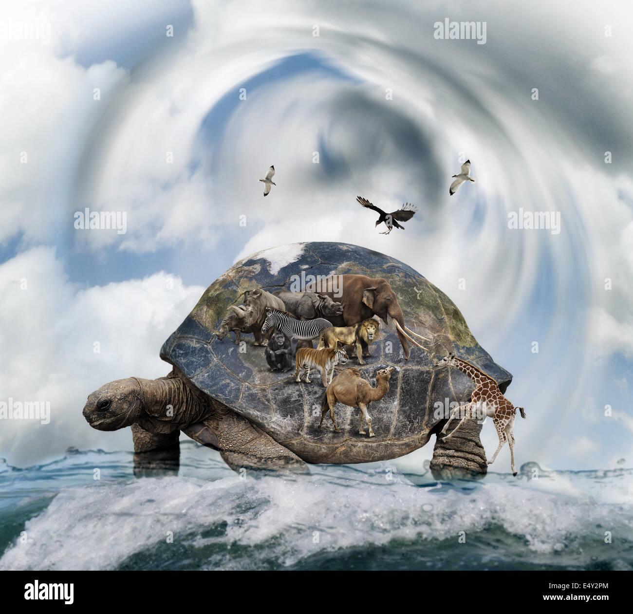 Mondo concetto della tartaruga Immagini Stock