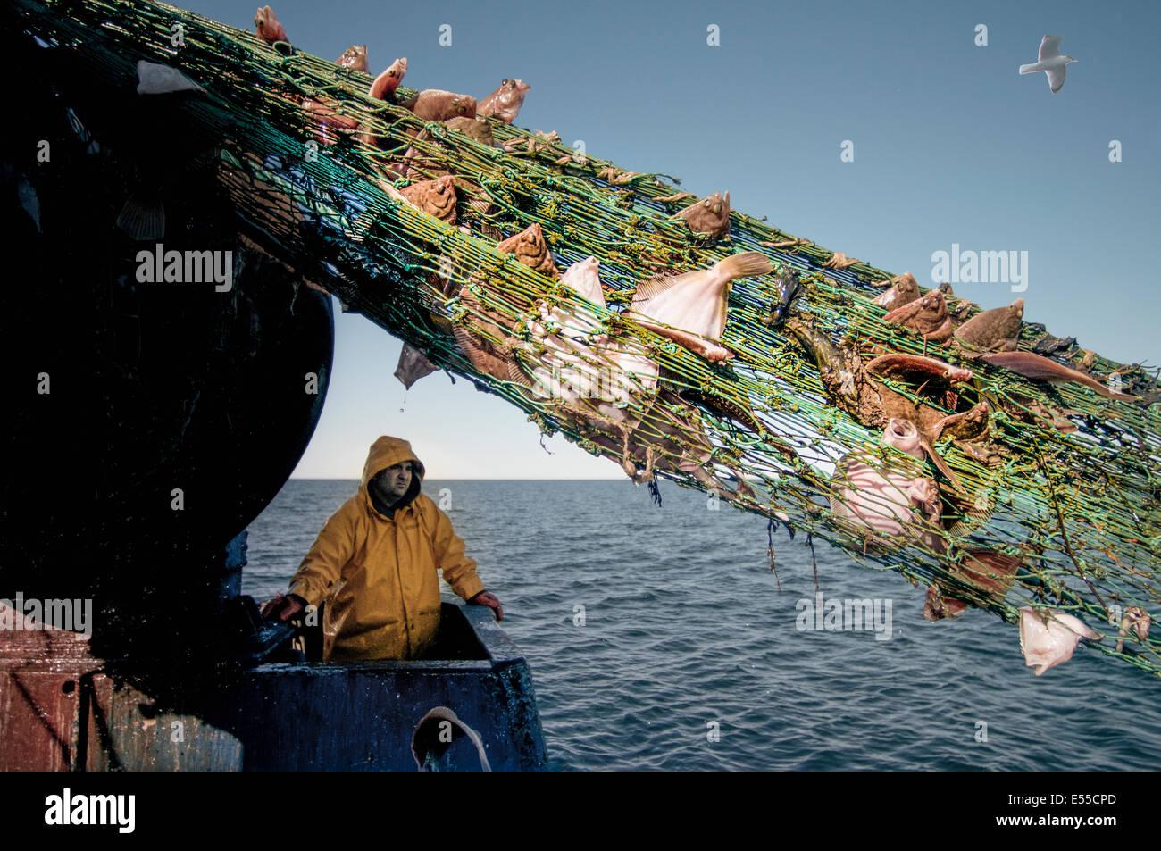 Pescatore tira indietro dragger net sulla pesca a strascico. Stellwagen banche, New England, Stati Uniti, Nord Oceano Atlantico. Foto Stock