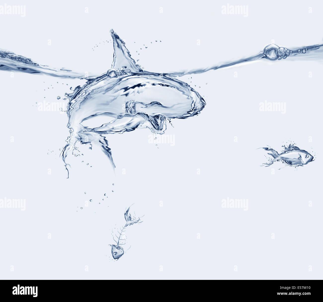 Uno squalo di acqua mangiato un pesce e lasciato il fishbone. Immagini Stock