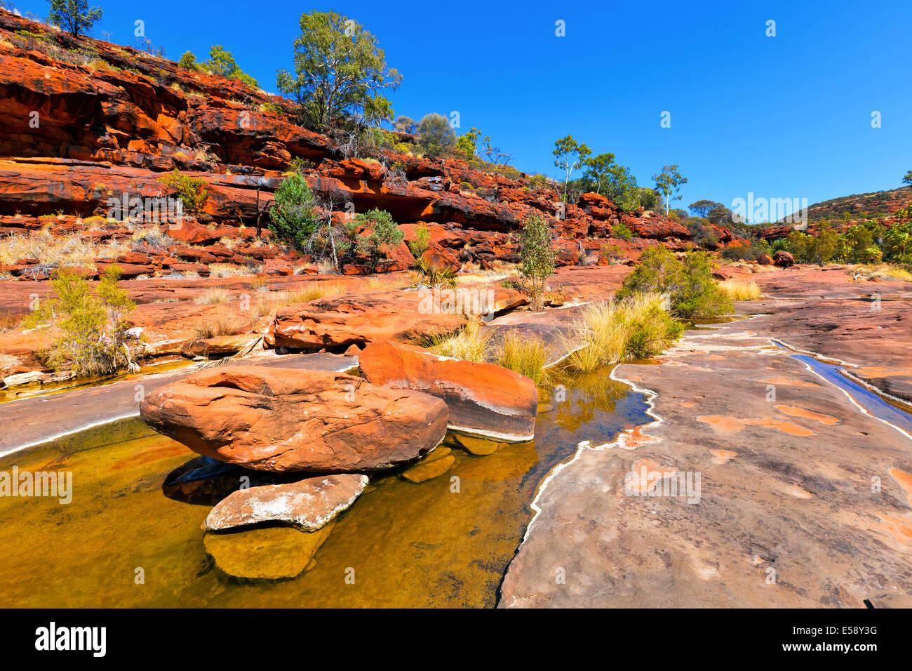 Palm Valley Central Australia Territorio del Nord Immagini Stock