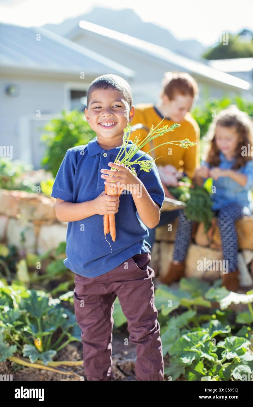 Ragazzo holding mazzetto di carote in giardino Immagini Stock