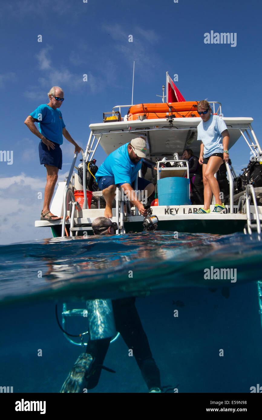 Recipiente di immersione sulla barriera corallina. Immagini Stock