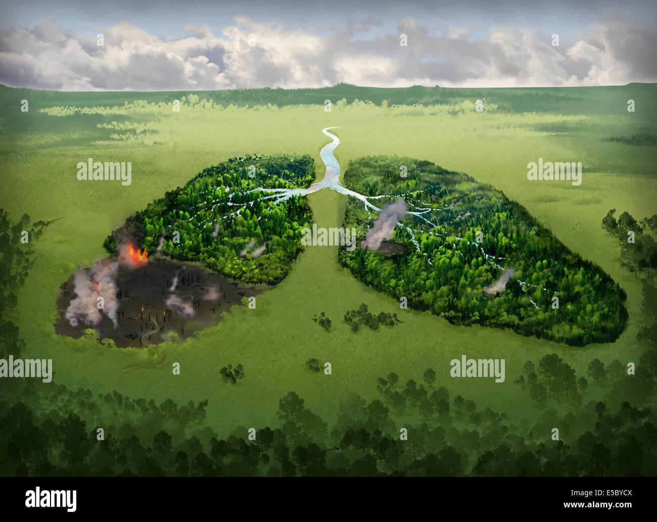 Immagine illustrativa di bruciare i polmoni sul campo che rappresentano problemi di fumo Immagini Stock