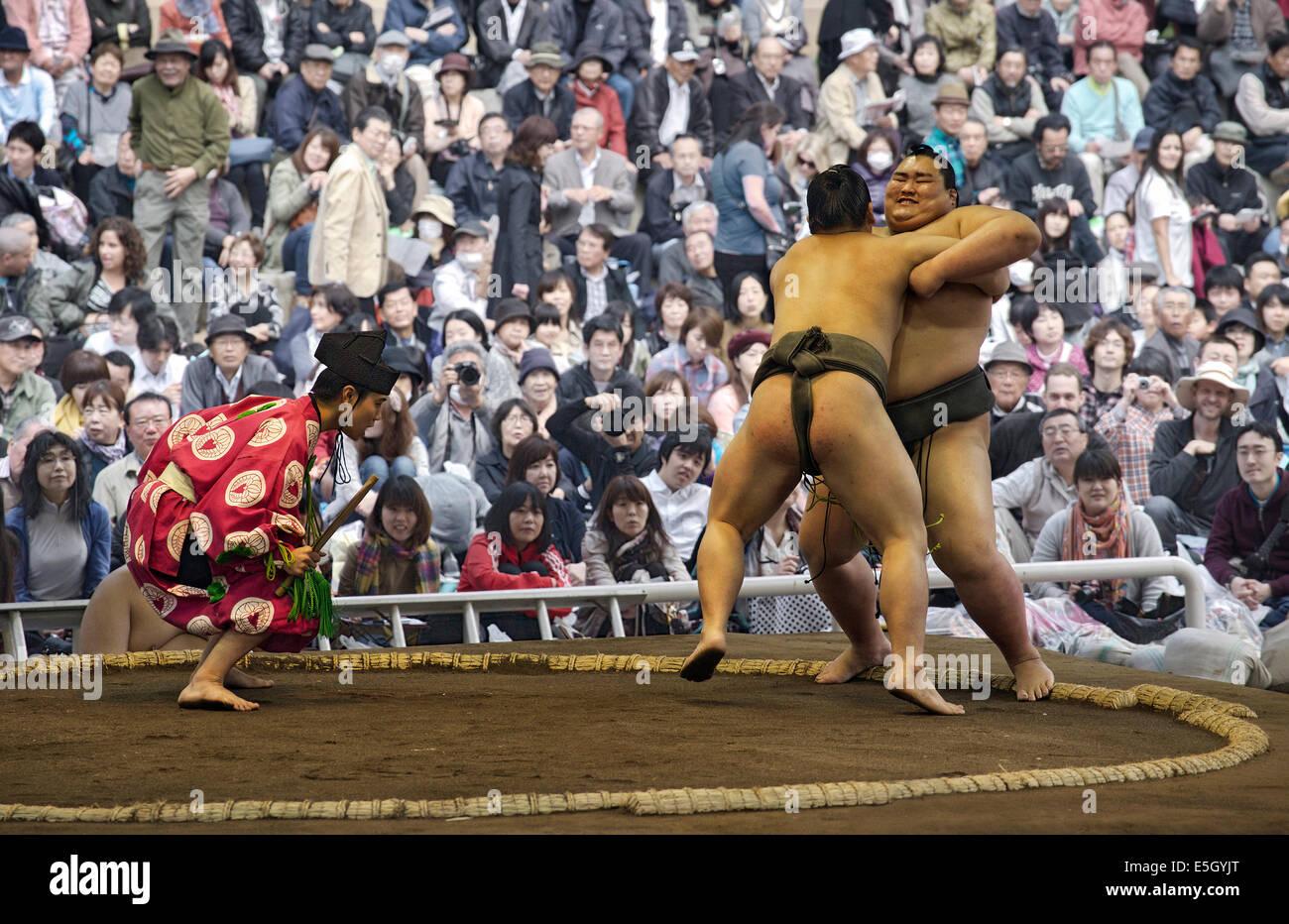 Sumo wrestling match, Tokyo, Giappone. Immagini Stock