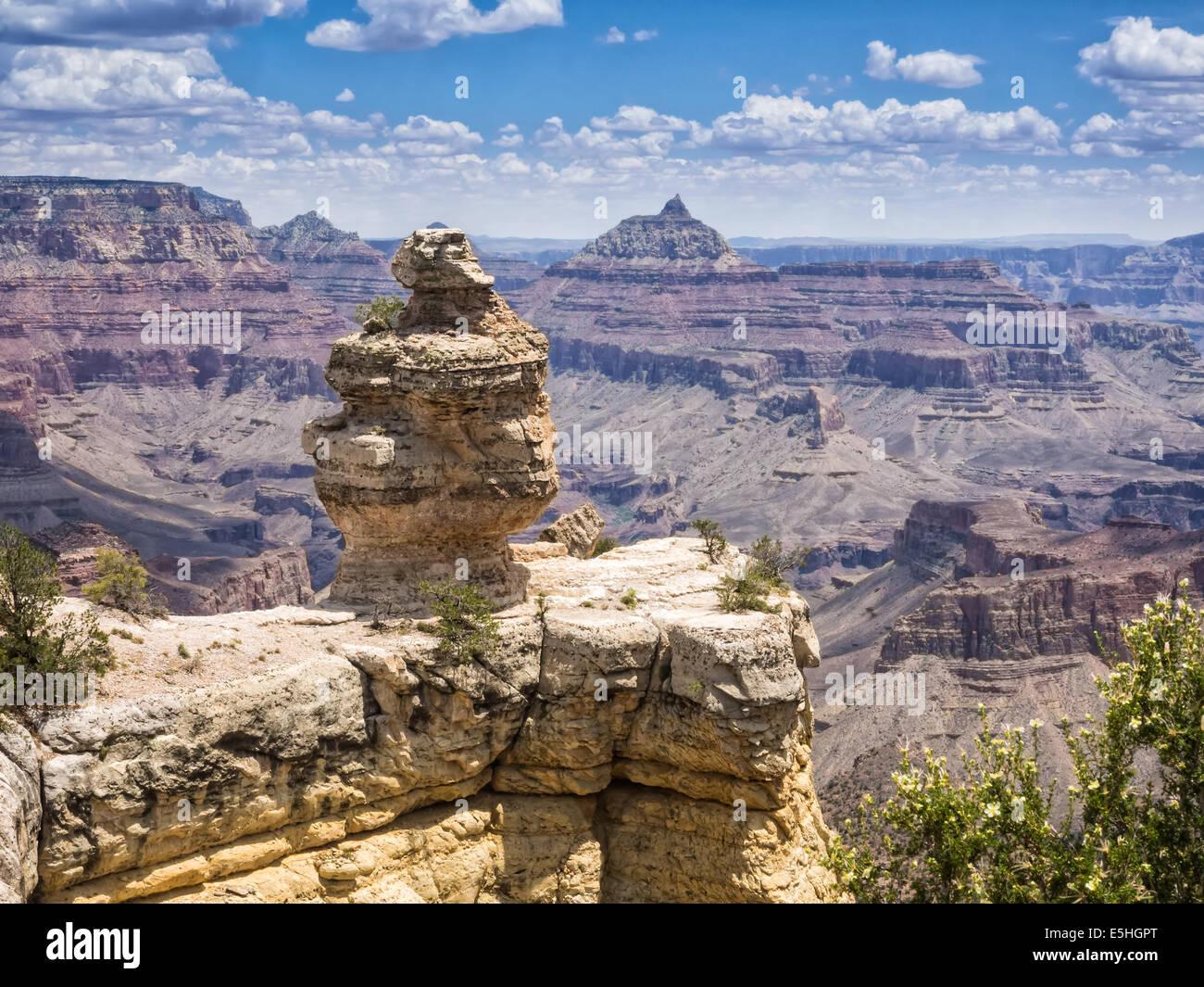 Parco Nazionale del Grand Canyon panorama con l'anatra, Arizona Foto Stock