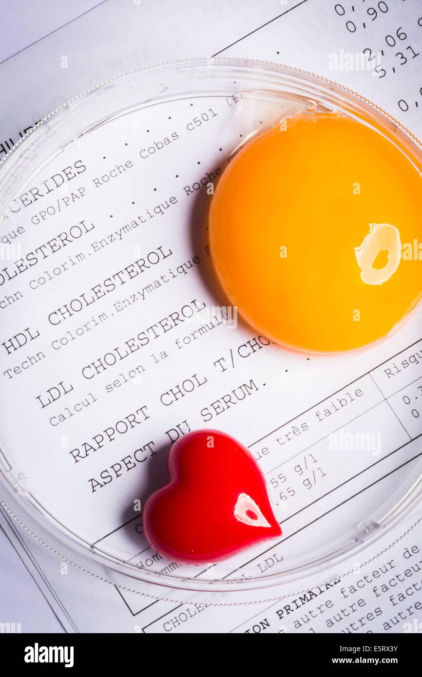 Concetto di colesterolo. Immagini Stock