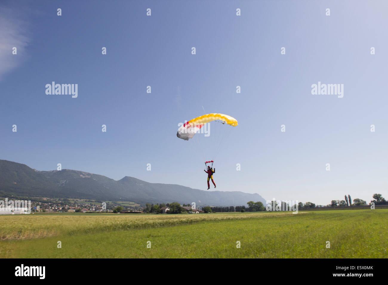 Femmina paracadutismo paracadutista in campo, avvicinandosi alla zona di atterraggio, Grenchen, Berna, Svizzera Immagini Stock