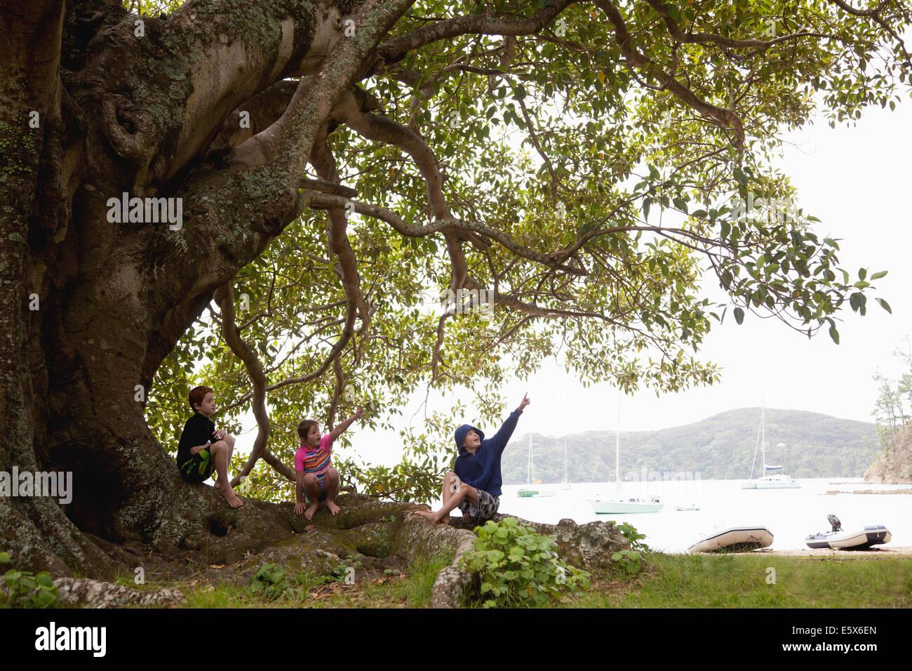 Tre ragazzi seduti sotto agli alberi Immagini Stock