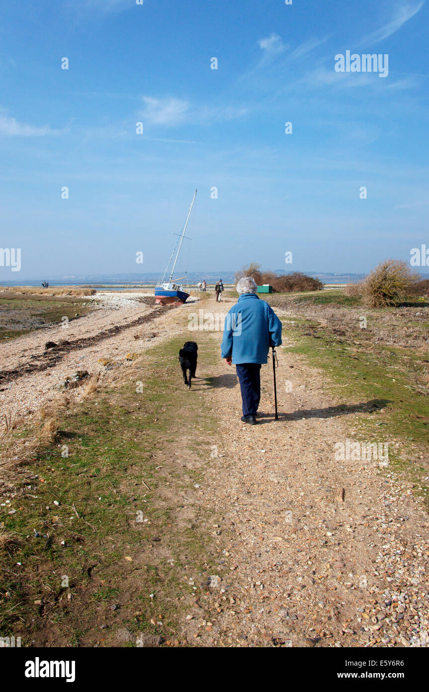 Senior donna a piedi un cane Immagini Stock