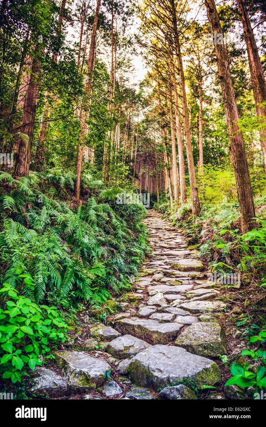 Kumano, Giappone a Matsumoto Pass. Il pass è parte del Kumano Kodo, una serie di antichi itinerari di pellegrinaggio. Immagini Stock