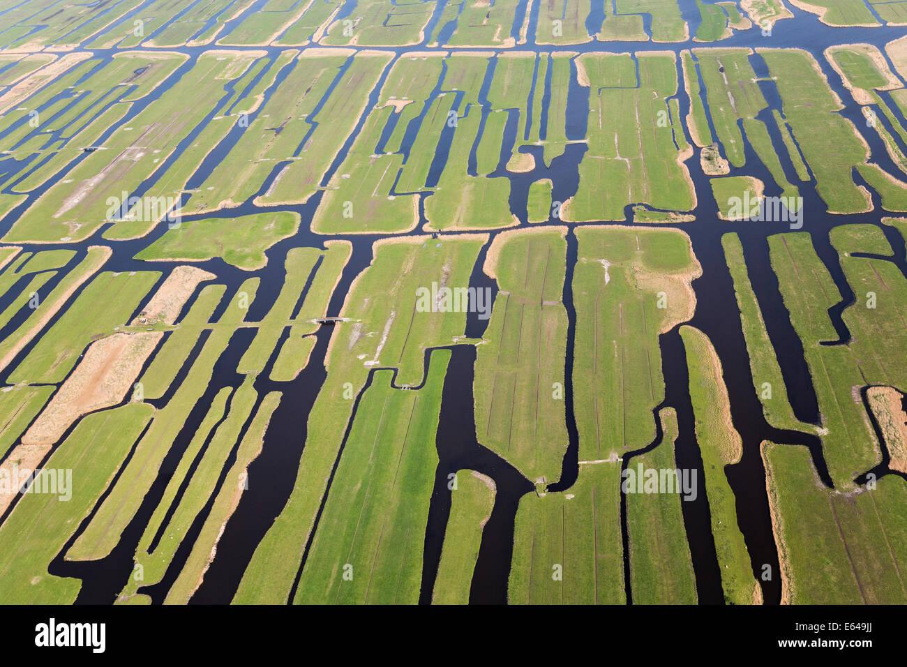 Polder o ri-rivendicato terre, North Holland, Paesi Bassi Immagini Stock