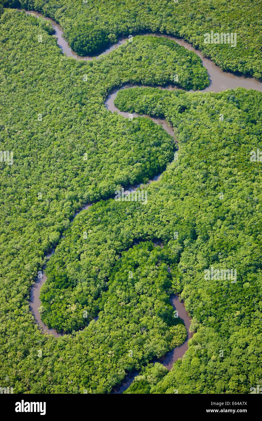 Vista aerea della foresta pluviale, Fiume Daintree, Parco Nazionale Daintree, Queensland Australia Immagini Stock