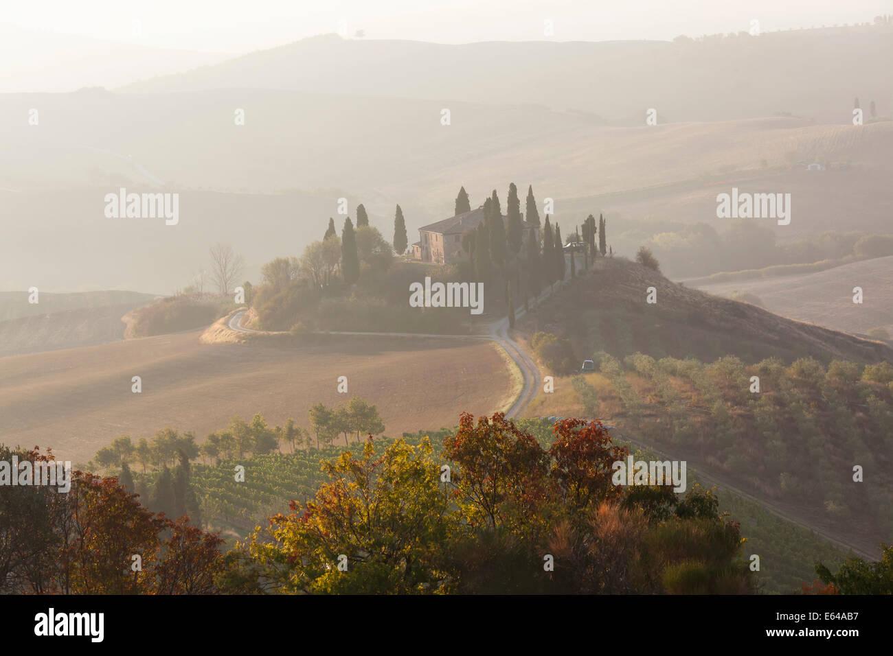 La mattina presto, Val d'Orcia, Toscana, Italia Immagini Stock