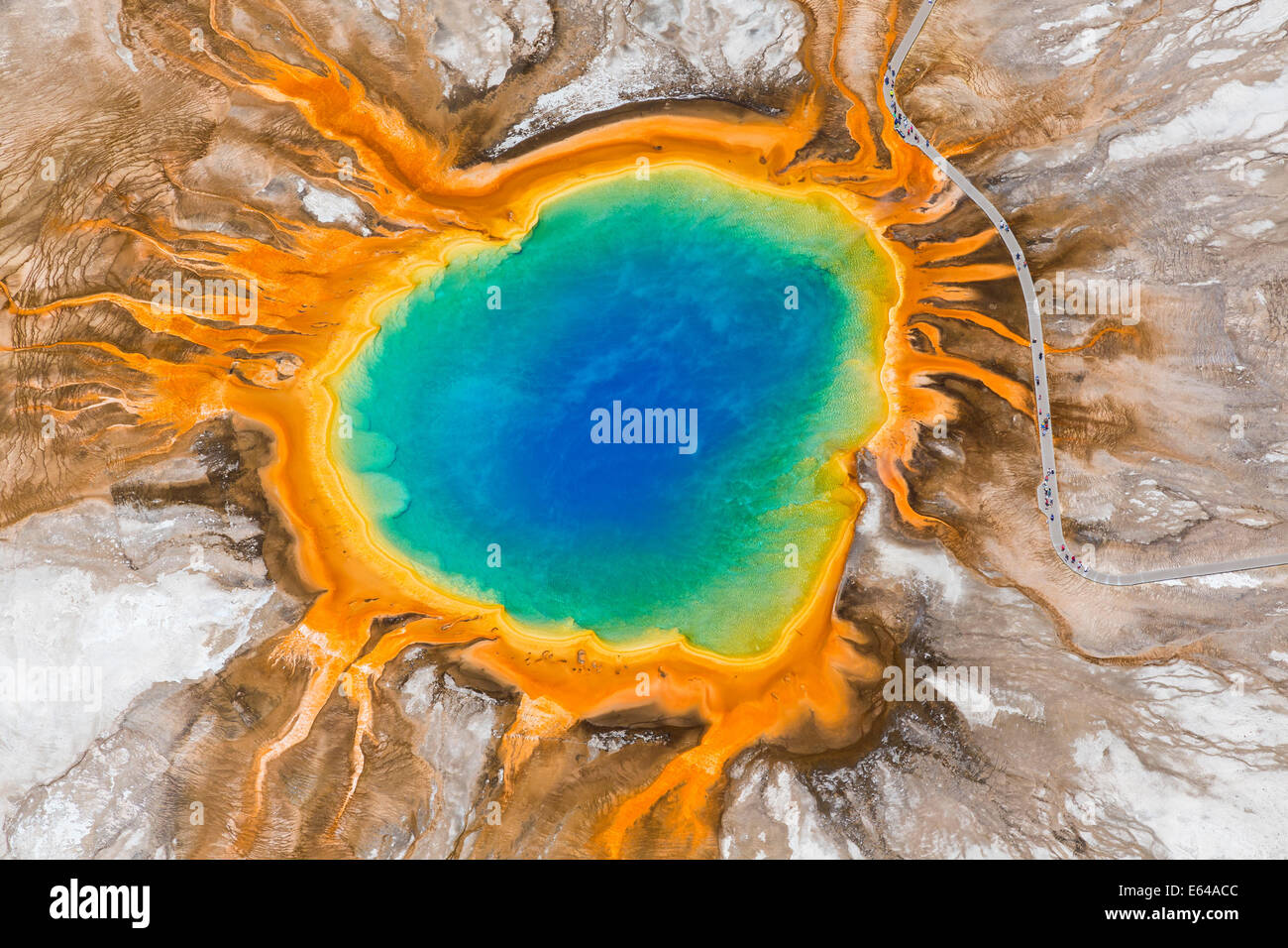 Grand Prismatic Spring, Midway Geyser Basin, il Parco Nazionale di Yellowstone, Wyoming USA Foto Stock
