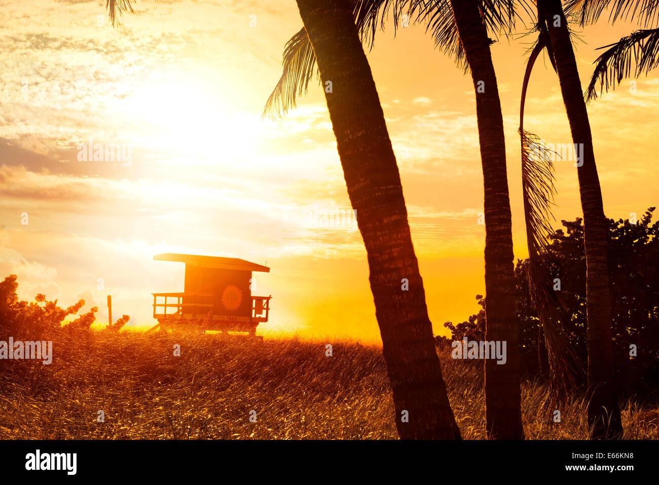 Miami South Beach Sunrise con bagnino tower e Palm tree Immagini Stock